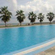 Swimming Pool Coating Uae Pool Coatings Coatings Ae